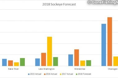 2018 Sockeye Salmon Forecast